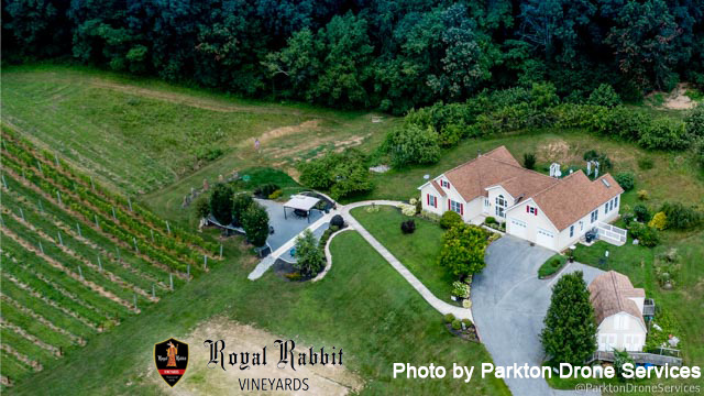 Royal Rabbit Vineyards, the perfect event venue North Baltimore County